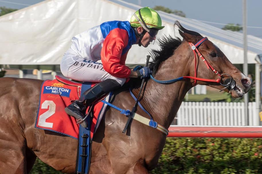 Clarke Racing Stables - Darwin